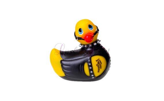 Petit canard bondage